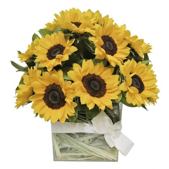 Bello Sunflowers Arrangement