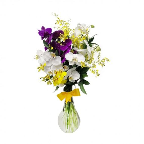 Arranjo de Orquídea Phalaenopsis e Orquídea Chuva de Ouro