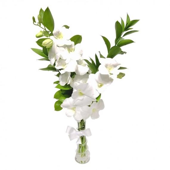 Arranjo de Orquídea Denphal