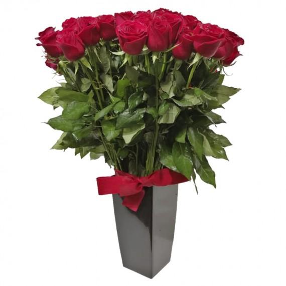 Arranjo com 100 Rosas Nacionais Vermelhas