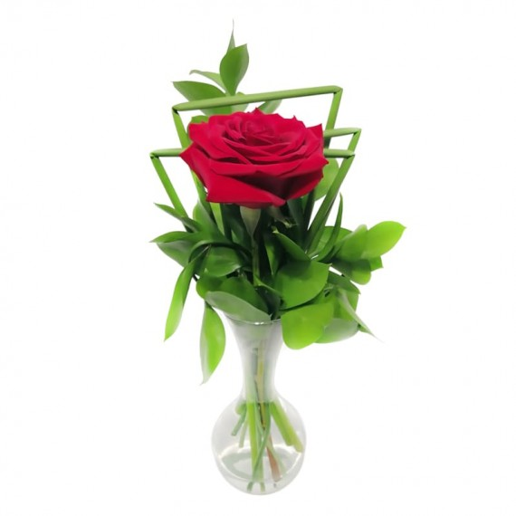 Arranjo com 1 Rosa Colombiana Magnifique