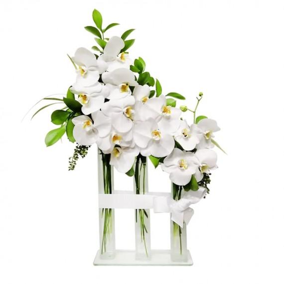 Arranjo Triplo de Orquídeas Phalaenopsis Branca