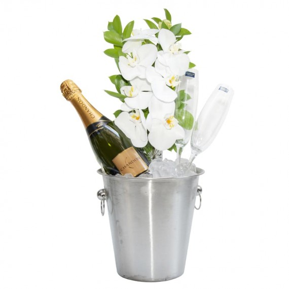 Stainless Bucket with Chandon Champagne, 2 Glasses and White Orchid Arrangement