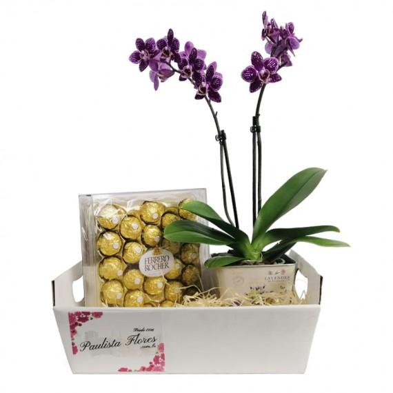 Sweet Orchid Basket I