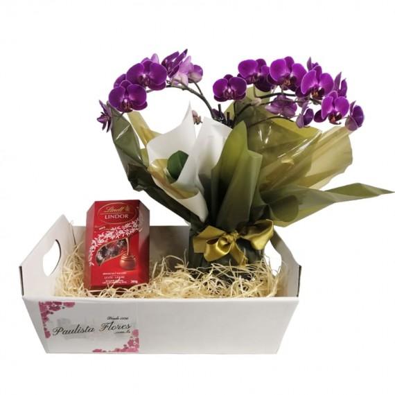 Sweet Orchid Basket III