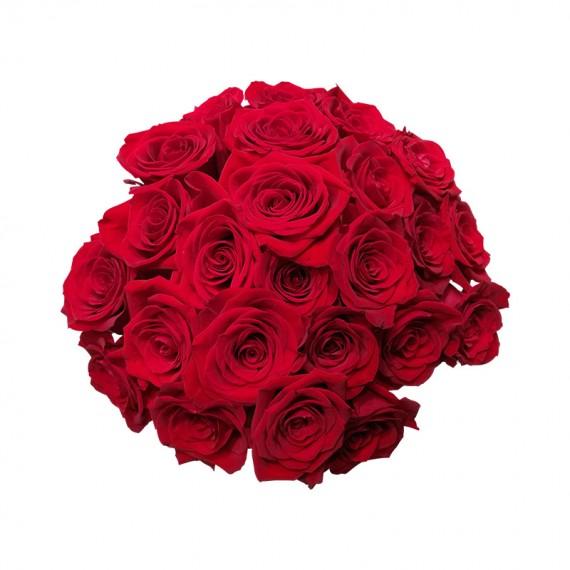 Buquê de 24 Rosas Colombianas