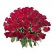 Buquê Grande com 40 Rosas Nacionais