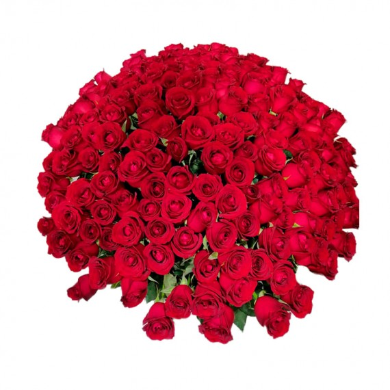 Mega Bouquet with 300 National Roses