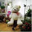 Mega Urso de Pelúcia com Cachecol -  120cm de altura