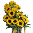 Splendid Sunflower Arrangement with Lindt Chocolate and Chandon Champagne