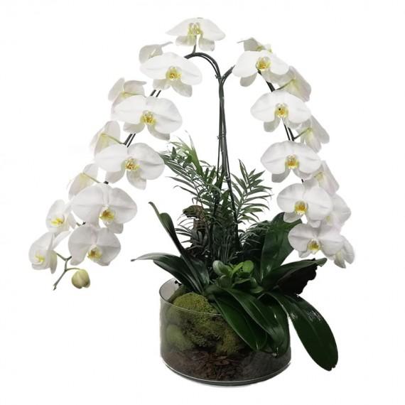 Arranjo Grande Orquidea Branca Phalaenopsis Cascata em vaso de vidro