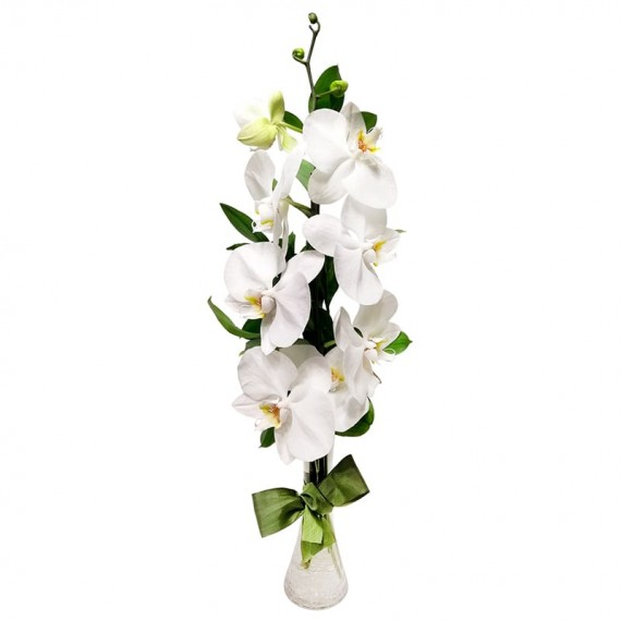 Vaso com Orquídea Phalaenopsis Branca