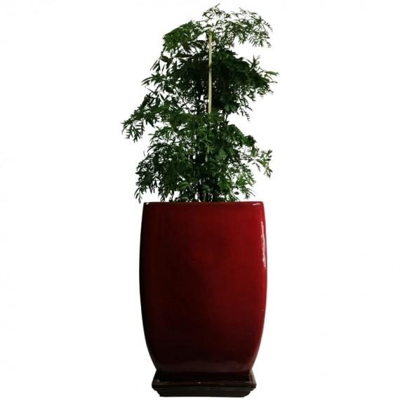 Tree Vase of Happiness in Vietnamese Vase