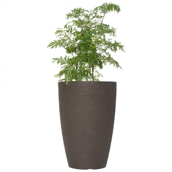 Vase with Happiness Tree
